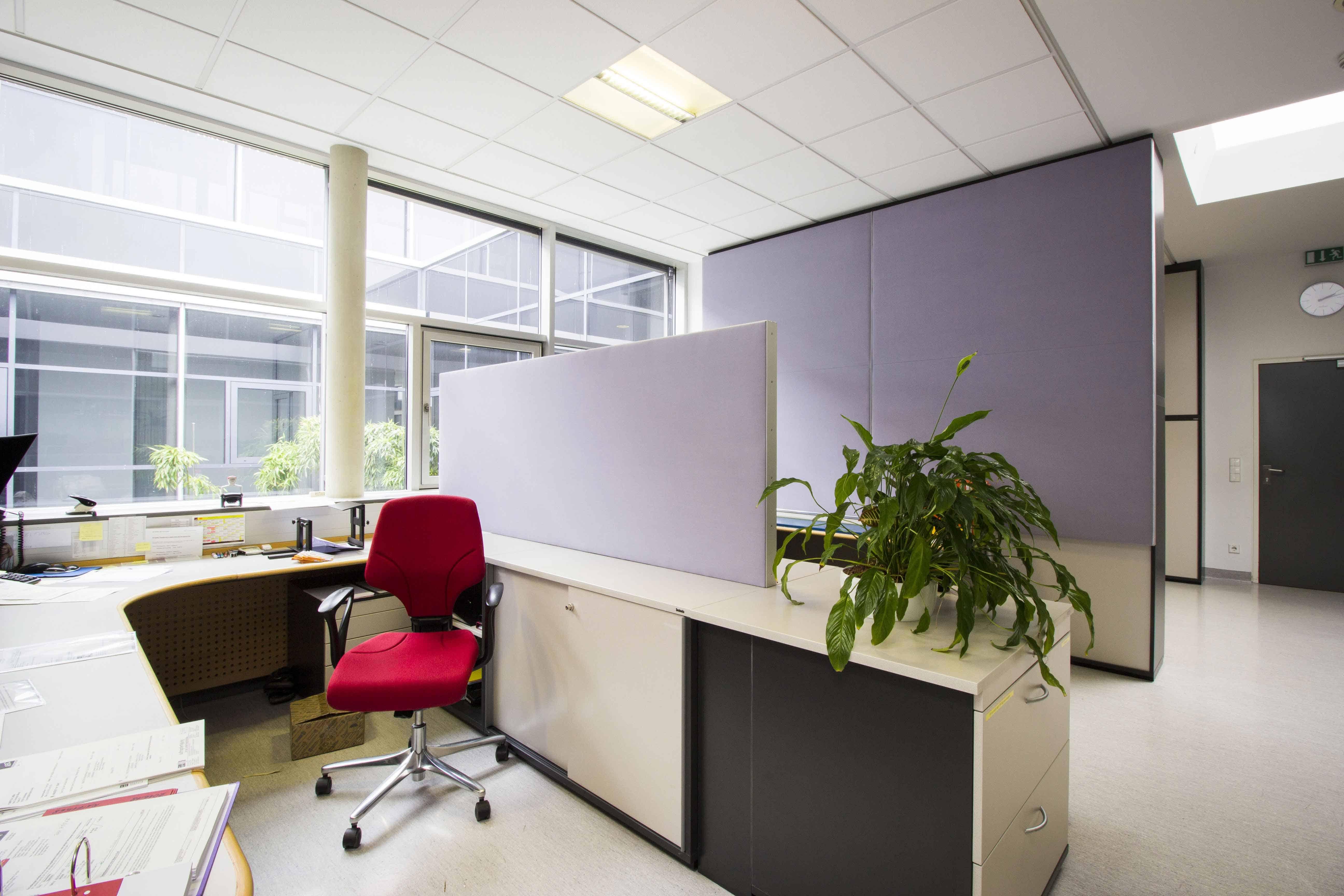 Verbesserung der Raumakustik im Großraumbüro durch verschiedene Absorber